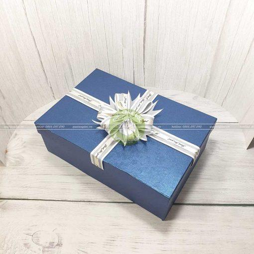 Hộp quà tặng sang trọng 30x20x10cm - HQ31