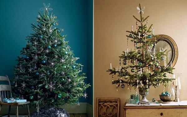 Nguồn gốc cây thông Noel